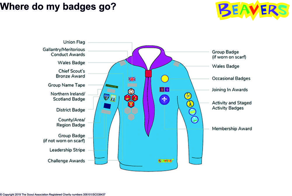 Beavers Uniform and badges
