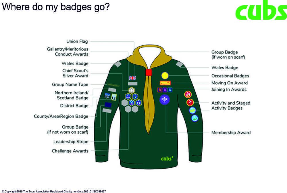 Cubs Uniform and badges